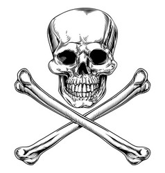 Jolly roger skull and crossbones vector