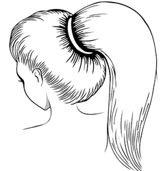 Long ponytail - line art vector image