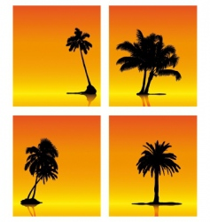 palm tree silhouettes on sunse vector image vector image