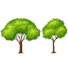 Two sizes of green tree vector