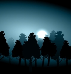 Valley middle forest in moonlight fog vector image vector image