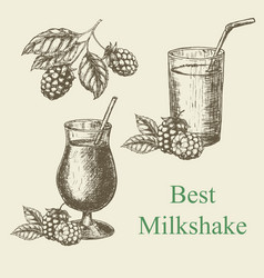 hand drawn milkshake and blackberry raspberry vector image
