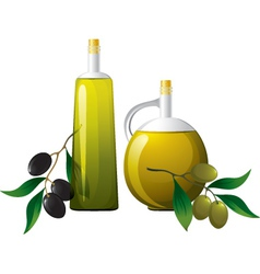 Bottle and olive branch vector image
