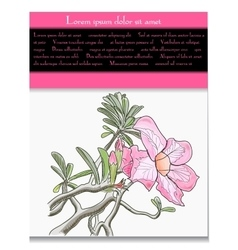 card with tropical flower vector image