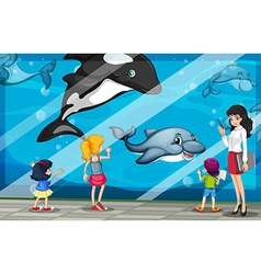 Children looking at dolphins at the aquarium vector