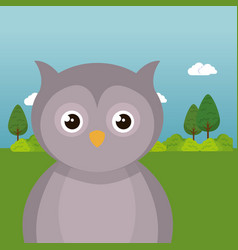 Cute owl in the field landscape character vector