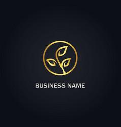 leaf organic seed gold logo vector image
