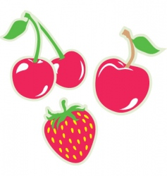 Strawberry and cherry vector