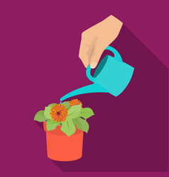 Watering the houseplant in a pot home flower vector