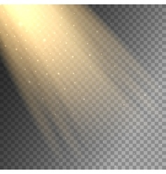 Ray of light on transparent background vector image