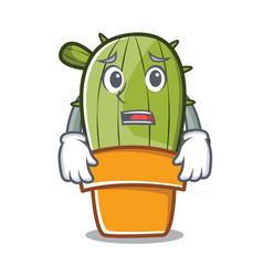 afraid cute cactus character cartoon vector image