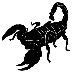 Silhouette of a scorpion vector image