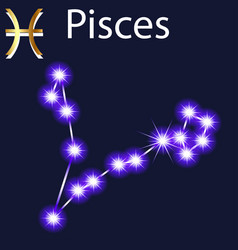 constellation pisces with stars in night sky vector image