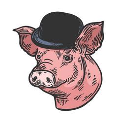 pig animal in bowler hat sketch color engraving vector image