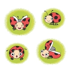 set ladybugs vector image