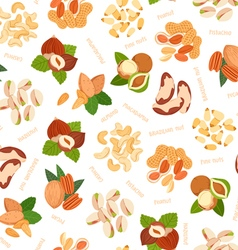 Various nuts pattern vector image vector image