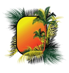 summer frame with palm trees vector image vector image