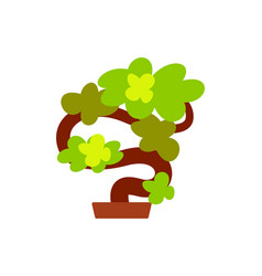 bonsai japanese tree plant grown in pot icon vector image