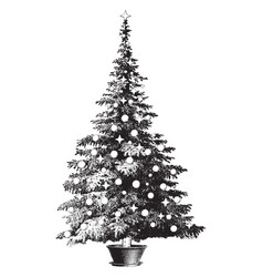 Decorated potted pine tree vintage vector