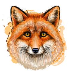 Fox sketchy color portrait with red fur vector