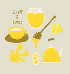 Honey and ginger design concept vector