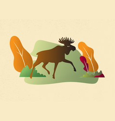 moose in wild nature landscape autumn colors vector image