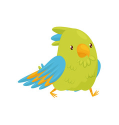 walking parrot with shiny eyes bird character vector image