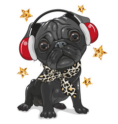 Black pug dog with headphones on a white vector