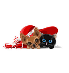 cat and dog in the hat vector image