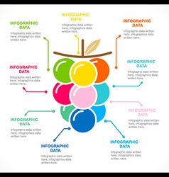 colorful fruit info-graphics design vector image