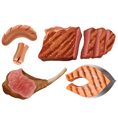 different types of grilled meats vector image