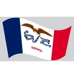 Flag of Iowa waving on gray background vector image