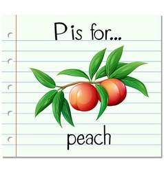 Flashcard letter p is for peach vector