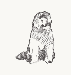 old english sheepdog dog realistic sketch vector image