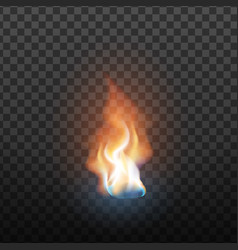 realistic design burning blaze element vector image