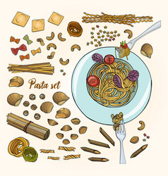 Set of different types pasta colorful hand drawn vector