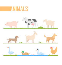 Set of farm animals - modern cartoon vector