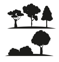 Silhouette tree different nature vector