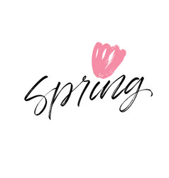 spring phrase lettering vector image