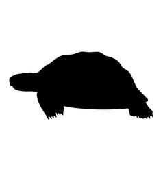 Black silhouette a turtle vector