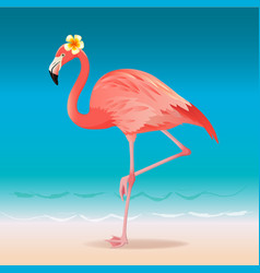Exotic pink flamingo walking on the hot summer vector