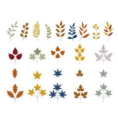 fall and autumn leaves set tree branches vector image