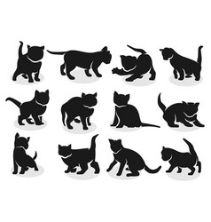 Kittens silhouettes vector
