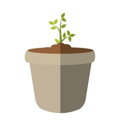 Plant and pot icon Nature design graphic vector image