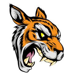 tiger mascot character vector image