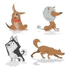 Funny dogs of various breeds standing in side view vector image