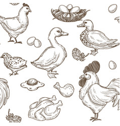 Farm with geese and hens rooster and eggs pattern vector