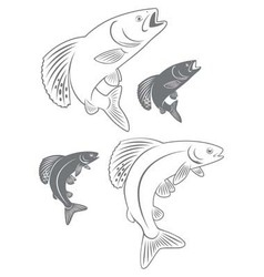 Fish grayling vector