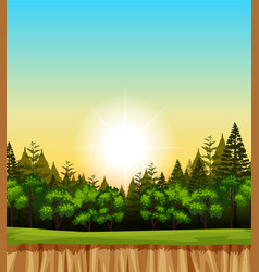 Forest scene with trees on the cliff vector