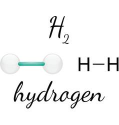 H2 hydrogen molecule vector